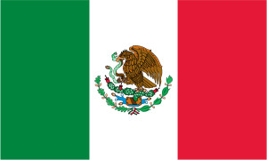 Mexico flag